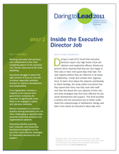 thumbnail of Daring to Lead 2011 Brief 2